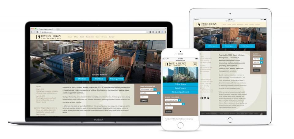 David S. Brown Website
